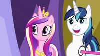 "Shining Armor ""definitely should've given you"" S7E3"