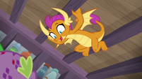 Smolder impressed by Spike's fire burps S8E11