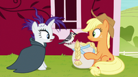 Woodpecker takes straw out of Applejack's wig S7E19