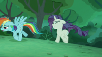 'Rainbow' and 'Rarity' emerges from the bushes S5E26