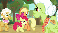 "Apple Bloom ""what does that mean?"" S9E10"