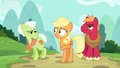 Applejack directs Granny to the back of the hospital S6E23.png