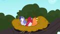 Birds chirping in a bird nest SS10.png