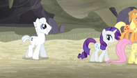 Double Diamond follows the Mane Six S5E1