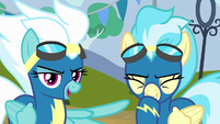 Fleetfoot --came down right on Spitfire's hoof-- S6E7