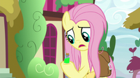"""Fluttershy """"I guess I have to"""" S9E18"""