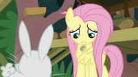 Fluttershy considering her to-do list S9E18