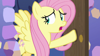 Fluttershy enters the castle kitchen S7E20