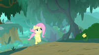 Fluttershy getting closer to the sound S8E18