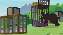 Grizzly bear goes inside pillowed cage S7E5