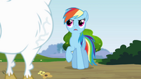 Rainbow 'I like your attitude, Bulk Biceps' S4E10