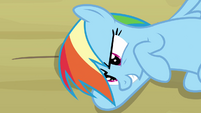 Rainbow Dash hatching a plan S2E16