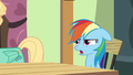 Rainbow Dash sighing exasperatedly S6E11.png