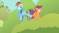 Rainbow and Scootaloo midair back kick S5E17