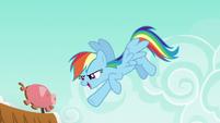 Rainbow says --gotcha!-- to Applejack S6E15