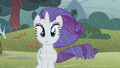 Rarity clueless look S1E8.png