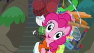 S06E22 Pinkie i jej bagaż