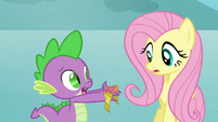 Spike gives Fluttershy the Element of Kindness S03E10
