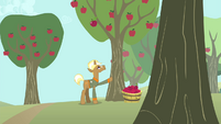 Trenderhoof punches an apple tree S4E13