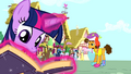 Twilight 'have free range to goof about' S4E12.png