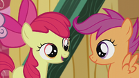 "AB ""We've never tried gettin' our cutie marks..."" S5E18"