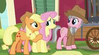 "Applejack ""what is it, sugarcube?"" S7E5"