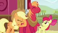 Applejack groans and face-hoofs S6E23