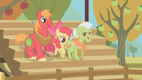 Big McIntosh, Apple Bloom, Granny Smith cheering S1E13