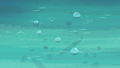Bubbles rising to the water's surface S6E22.png