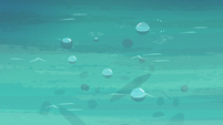 Bubbles rising to the water's surface S6E22