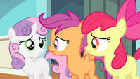 CMC looking at each other S4E24