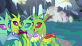 Changelings listen to Starlight and Thorax's lesson S7E1.png
