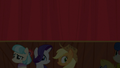 Coco, Rarity, and AJ look at the audience S5E16.png
