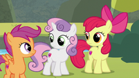 Cutie Mark Crusaders looking at each other S8E6