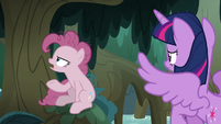 "Fake Pinkie ""why would I waste my time"" S8E13"