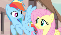 "Fluttershy ""don't be so rude"" S5E1"