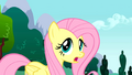 Fluttershy Screaming and Hollering S01E16.png
