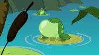 Frog croaking S3E06