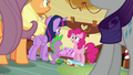 """Pinkie Pie """"for what?"""" S6E15.png"""