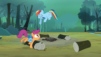 Scootaloo bumping into log S3E6
