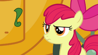 Apple Bloom does not approve S3E4