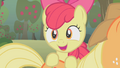 Apple Bloom excited S01E12.png