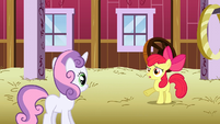 Apple Bloom huh S2E17