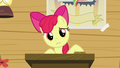 Apple Bloom puzzled S5E4.png