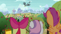 Cutie Mark Crusaders watch Gabby fly away S6E19.png