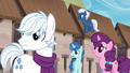 Double Diamond, Party Favor, Sugar Belle, and Night Glider sees someone S5E26.png