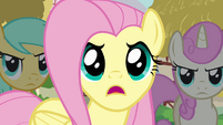 Fluttershy -And they trashed our critter picnic!- S3E3