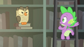 Owlowiscious hoots at Spike S4E23.png