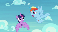 "Rainbow ""how dangerous they are"" S8E20"