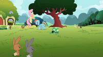 Rainbow Dash go away tortoise S2E7